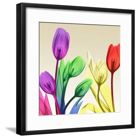 Floral Splurge 2-Albert Koetsier-Framed Art Print