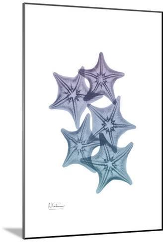 Lavender Splashed Starfish 1-Albert Koetsier-Mounted Art Print