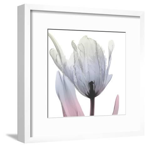 Silver Splash 2-Albert Koetsier-Framed Art Print