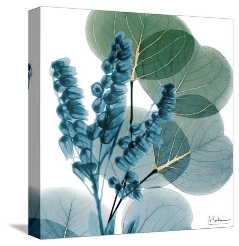 Golden Lilly Of Eucalyptus-Albert Koetsier-Stretched Canvas Print