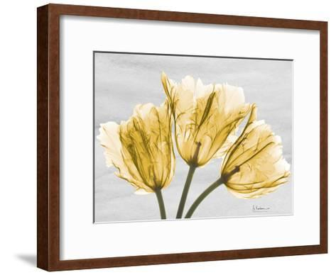 Sunny Trio Tulips-Albert Koetsier-Framed Art Print