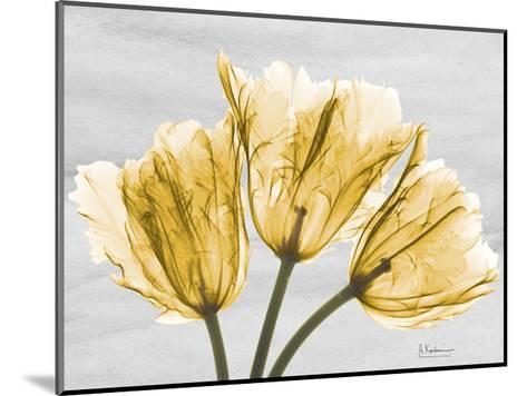 Sunny Trio Tulips-Albert Koetsier-Mounted Art Print