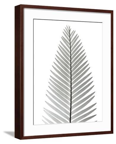 Tropical Fern 2-Albert Koetsier-Framed Art Print