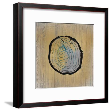 Country Minerals 2-Kimberly Allen-Framed Art Print