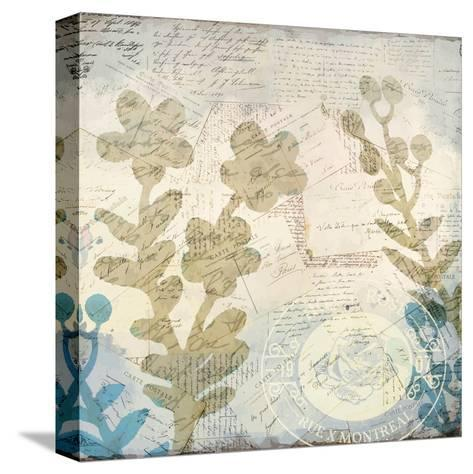 Botanical Postale 2-Kimberly Allen-Stretched Canvas Print