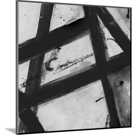 Through The Webbing BW 2-Smith Haynes-Mounted Art Print