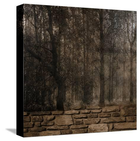 Stone Wall Landscape-Sheldon Lewis-Stretched Canvas Print