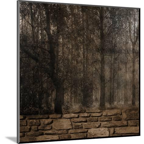 Stone Wall Landscape-Sheldon Lewis-Mounted Art Print