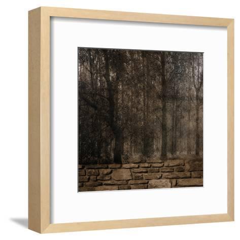 Stone Wall Landscape-Sheldon Lewis-Framed Art Print