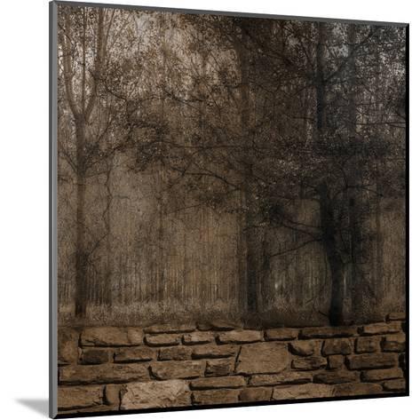 Stone Wall Landscape 2-Sheldon Lewis-Mounted Art Print