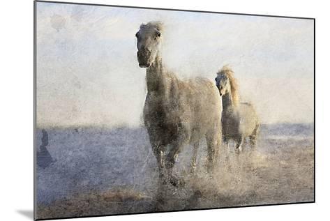 Running Free-Kimberly Allen-Mounted Art Print