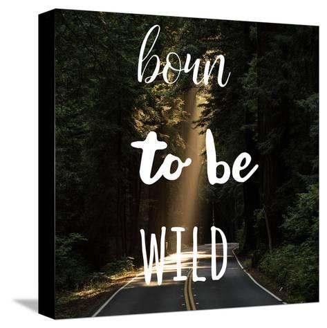 Born To Be Wild-Jelena Matic-Stretched Canvas Print
