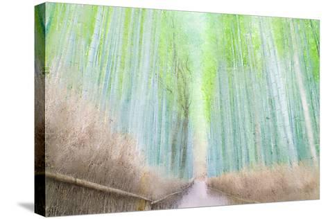 Down the Path-Kimberly Allen-Stretched Canvas Print