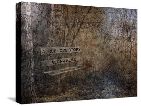 Our Secret Place-Sheldon Lewis-Stretched Canvas Print