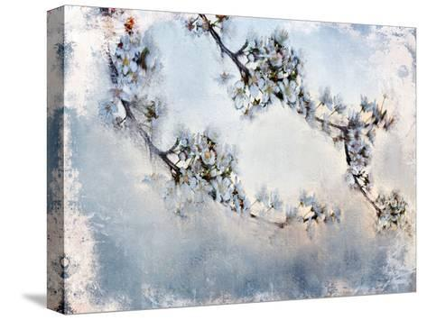 Magnolia Branch-Kimberly Allen-Stretched Canvas Print