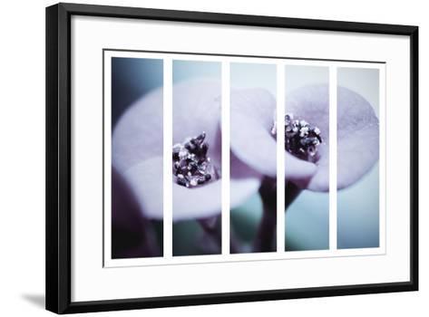 Thru The Panels-Kimberly Allen-Framed Art Print