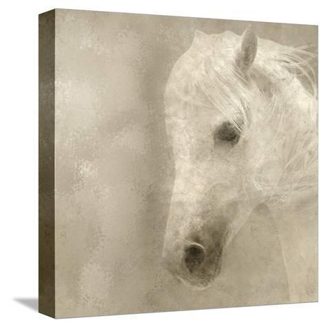 White Mane-Kimberly Allen-Stretched Canvas Print