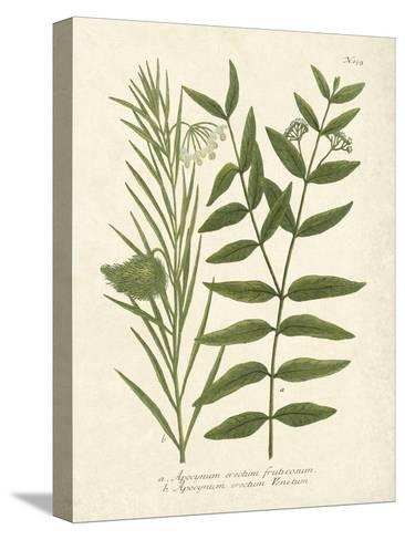 Botanica Indicum-The Vintage Collection-Stretched Canvas Print