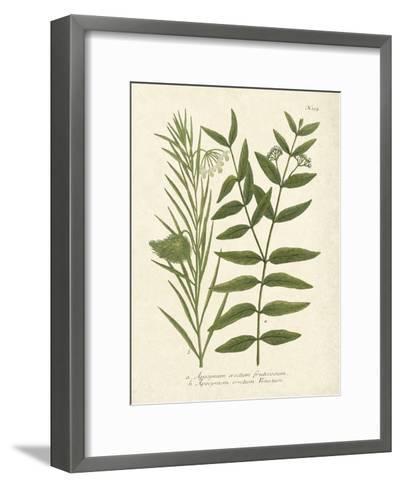 Botanica Indicum-The Vintage Collection-Framed Art Print