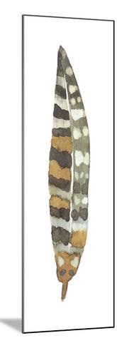 Feather Plume VI-Sandra Jacobs-Mounted Art Print