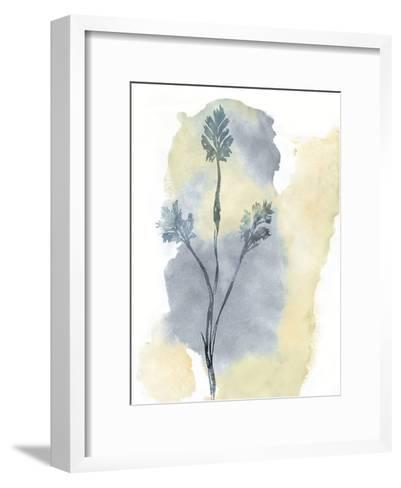 Wildflower Ensemble-Tania Bello-Framed Art Print