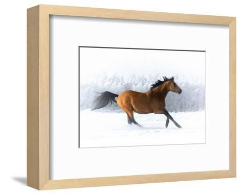 Pop of Color Running Horse-Color Me Happy-Framed Art Print