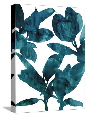 Ficus Elastica-Tania Bello-Stretched Canvas Print