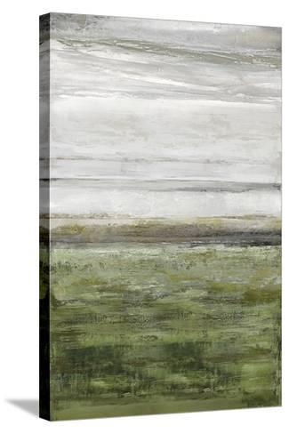 Ocala-Mark Chandon-Stretched Canvas Print