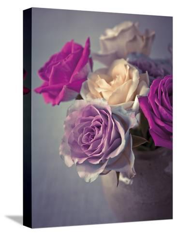 Vintage Rosa-Assaf Frank-Stretched Canvas Print