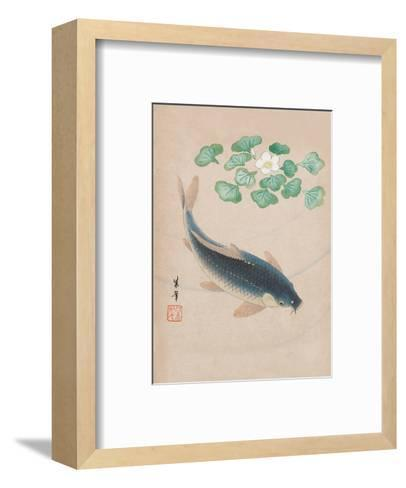 Carp with Water Flowers--Framed Art Print
