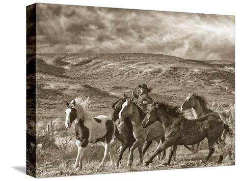 Katy Rides Again-Barry Hart-Stretched Canvas Print