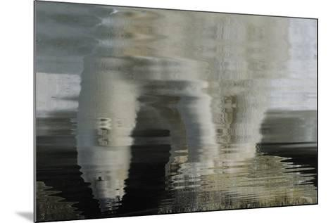 Polar Bear Reflection-Staffan Widstrand-Mounted Giclee Print