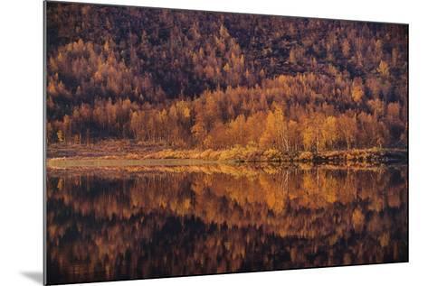 Autumn Reflections-Staffan Widstrand-Mounted Giclee Print