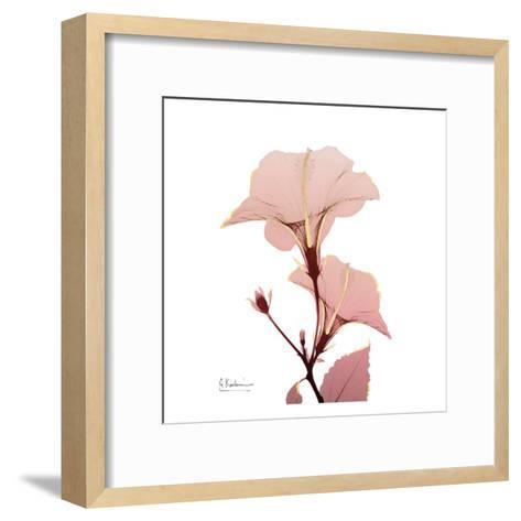 Golden Blush 1-Albert Koetsier-Framed Art Print