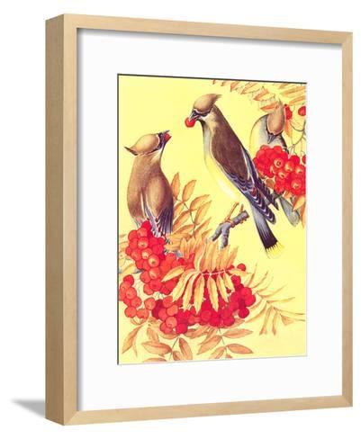 Cedar Waxwings-Found Image Press-Framed Art Print