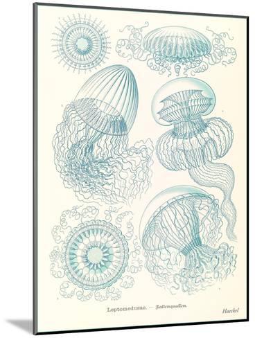 Blue Jellyfish-Found Image Press-Mounted Art Print