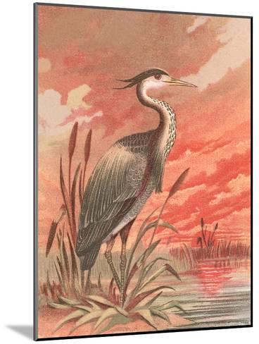 Crane In Marsh At Sunset-Found Image Press-Mounted Art Print