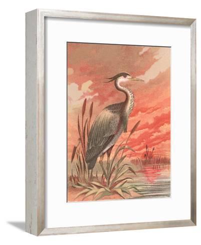 Crane In Marsh At Sunset-Found Image Press-Framed Art Print