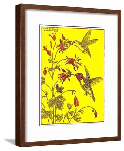 Ruby-Throated Hummingbirds-Found Image Press-Framed Art Print