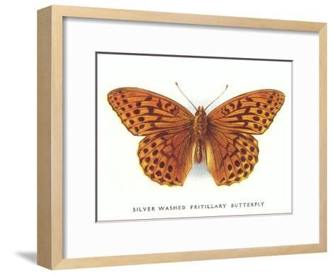 Silver-Washed Fritillary Butterfly-Found Image Press-Framed Art Print