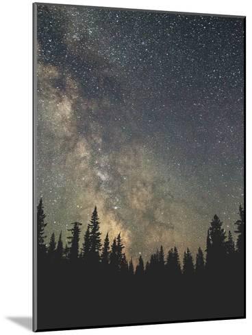 Stars Over The Forest Ii-Luke Gram-Mounted Art Print