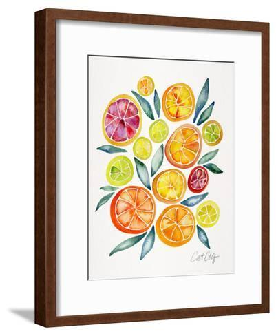 Citrus Slices-Cat Coquillette-Framed Art Print