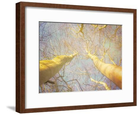 Reaching For The Sky-Hal Halli-Framed Art Print