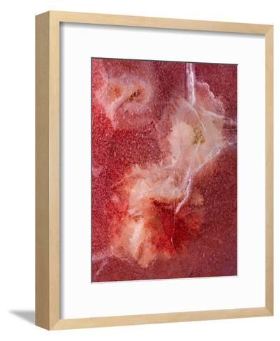 Corrida De Toros-Zina Zinchik-Framed Art Print
