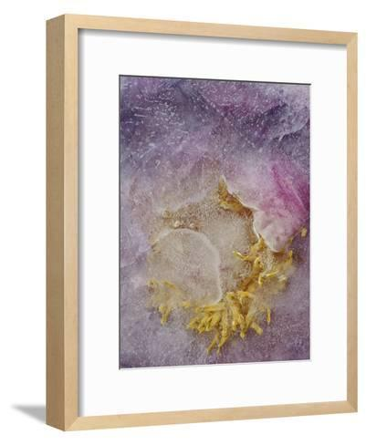 Sunshine Is Coming-Zina Zinchik-Framed Art Print