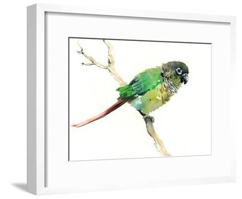 Conure Parakeet Parrot-Suren Nersisyan-Framed Art Print
