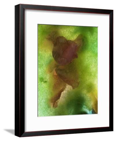 Indestructible-Zina Zinchik-Framed Art Print