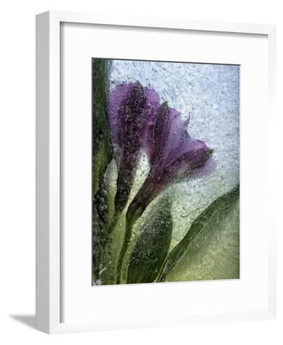 Couple Love-Zina Zinchik-Framed Art Print