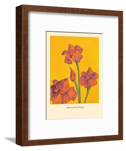 Hawaiian Torch Ginger-Pacifica Island Art-Framed Art Print