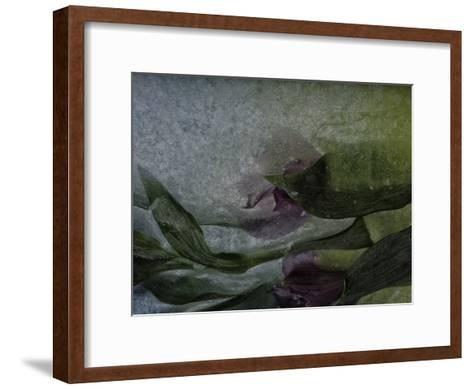 Where Mermaids Hide-Zina Zinchik-Framed Art Print
